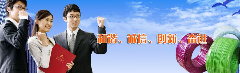 长安牌电线雷火电竞竞猜